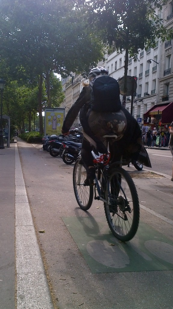 Cyclist on Boulevard de Rochechouart, Paris, July, 21, 2012
