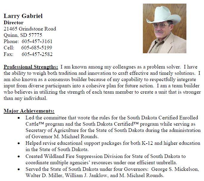 2008 NBP Business Plan: Gabriel resume