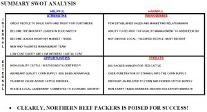 Northern Beef Packers SWOT analysis, 2008 business plan
