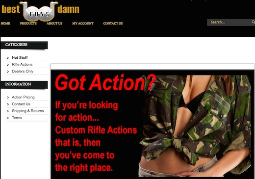 Best Damn Guns website, http://bdguns.corecommerce.com, screen cap, 2014.11.13