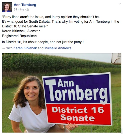 Karen Kirkebak, registered Republican, endorses Democrat Ann Tornberg for District 16 Senate. From Facebook, 2014.11.03.